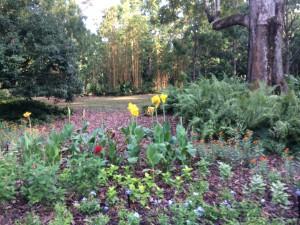 IMG_5448_botanicgarden1