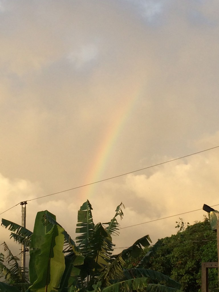 IMG_9445_rainbow