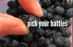 Pick Your Battles-Maida's Touch